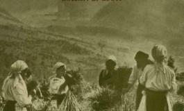 Stiinta natiunii (1937); Reflectiile si indoielile cu privire la stiinta natiunii romanesti (1937)