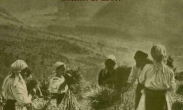 Participarea satelor la organizarea tarii (1938)