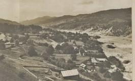 Henri H. Stahl si obstile agricole – pagini putin cunoscute ale istoriei sociologiei romanesti (II)