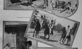 Planuri si proiecte pentru volumul V al Enciclopediei Romaniei
