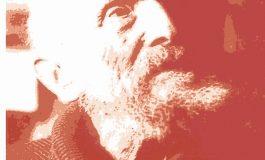 """Rinocerii"" [interviu cu H. H. Stahl din ""Monografia ca utopie""]"